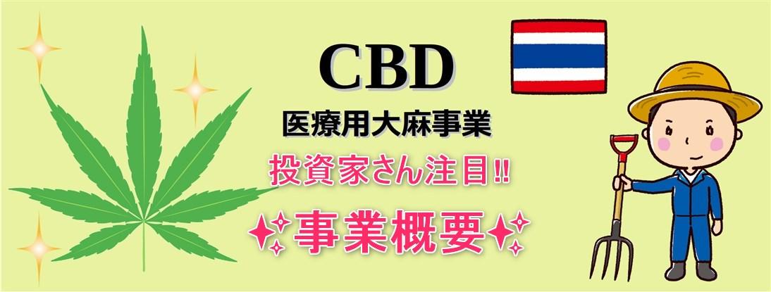 CBD医療用大麻事業 概要